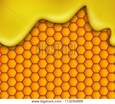 Honey flow on honeycomb background.
