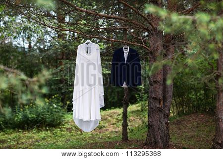 Groom's Suit And Bride White Dress