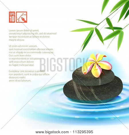 Spa Background With Flower. Vector Illustration, Eps10.