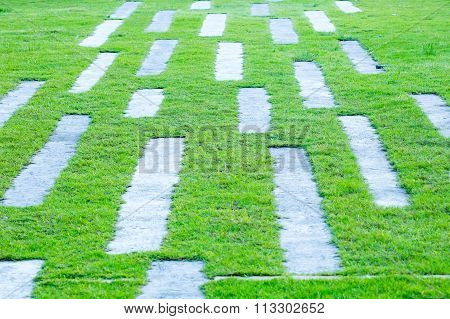 Abstract grass background with concrete pathway.
