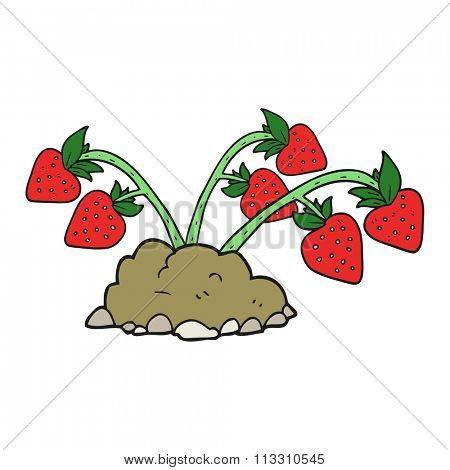 freehand drawn cartoon strawberries