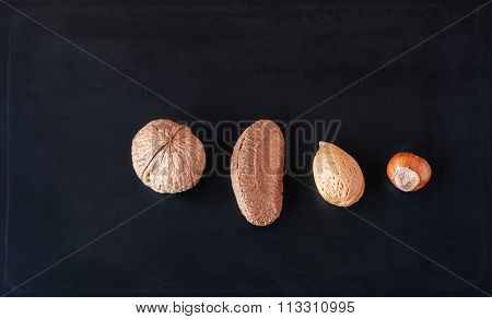 Three Nuts And A Seed