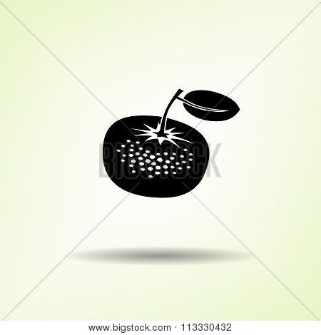 Mandarin icon. Black silhouette with shadow on light green backdround. Flat design. Vector isolated