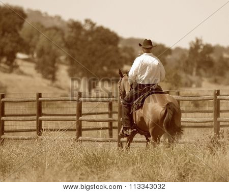 A cowboy and horse in sepia.