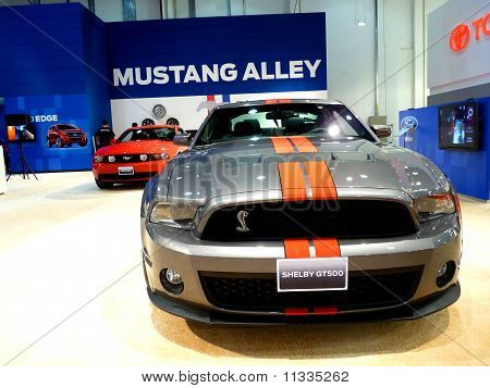 Ford Mustang Stand