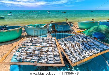 Dried fish drying on a basket boat