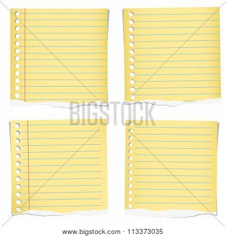 Set of yellow torn notebook papers with blue lines on white background