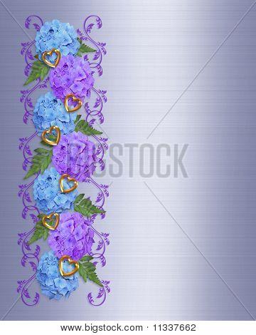 Floral Border hydrangeas
