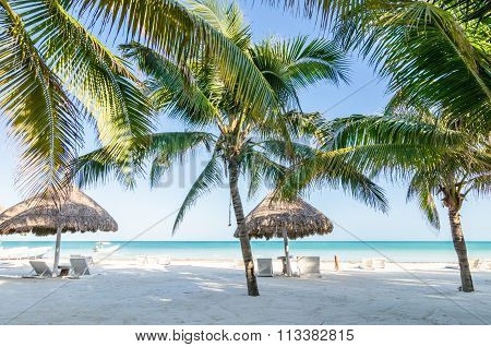Tropical Vacation View With Palm Trees At Exotic Sandy Beach On Caribbean Sea