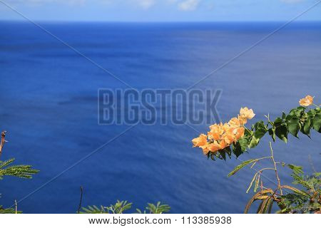 Two lovers point in Guam Micronesia