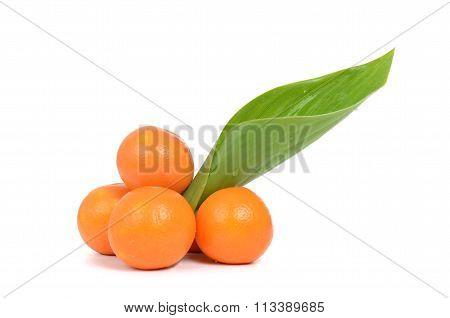 Oranges Fresh