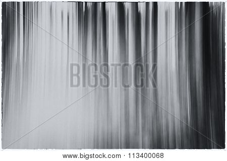 A Conceptual Black And White Photo Using A Slow Shutter Speed Of Trees In A Forest Showing Leaves Wi