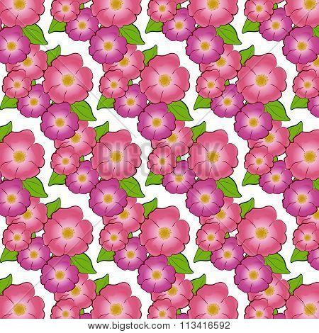 Brier flower pattern