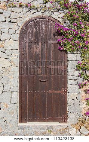 Brown Door With Pink Bougainvillea