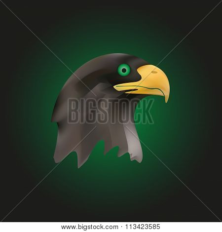 Head Of Brown Majestic Eagle Bird Eps10