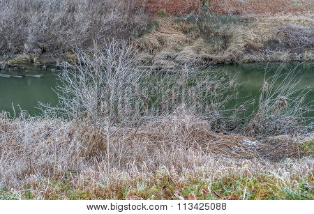 Banks Of The Green River 2