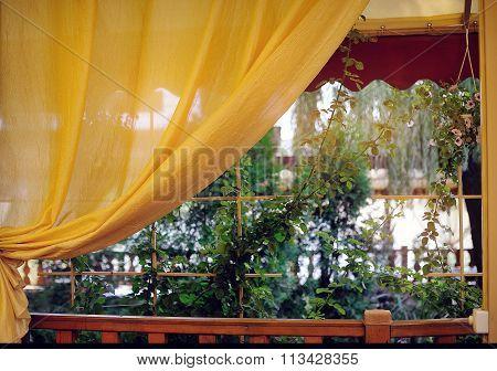 Golden Curtain