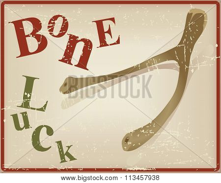 Bird Bone Superstitious Recognized Bone Luck