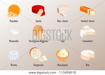 Collection of delicious cheese style flat