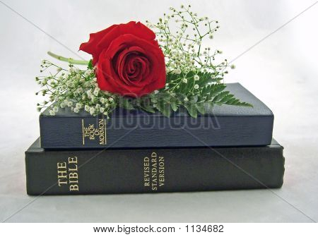 Holy Bible And The Book Of Mormon