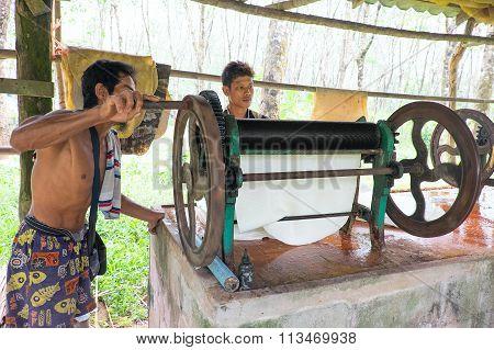 Rubber Production