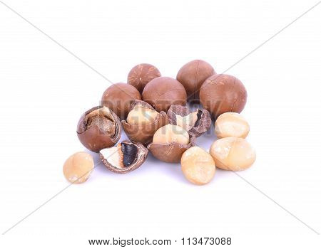 Macadamia Nuts Isolated On White Background
