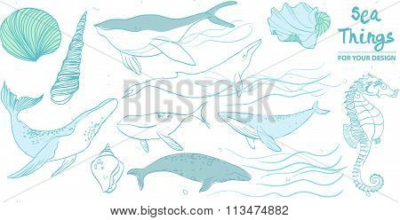 set of whales and marine animals on a white background in the style of a pencil. Hand Drawn Illustra