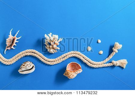 Rope With Various Sea Shells On Blue Background