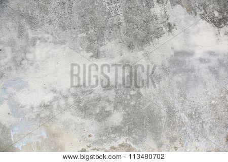 grey wall (concrete).