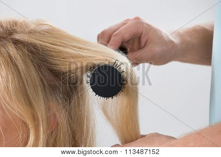 Hairstylist Brushing Woman's Hair