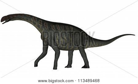Jobaria dinosaur walking - 3D render