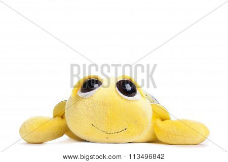 Children's Toy Yellow Turtle Isolated On White Background