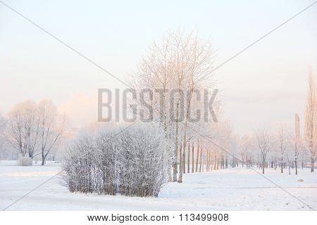very frosty winter morning