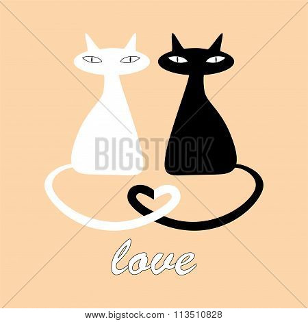 Black and white cats in love