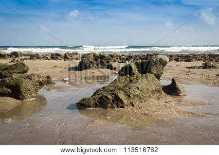 Beach And Stone Atlantic Sea Florida