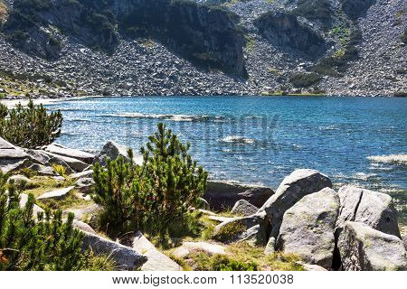 Beautiful Lake in the mountains near Bansko, Bulgaria and Water crowfoot