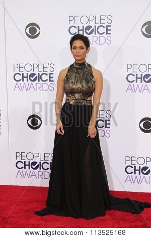 LOS ANGELES - JAN 6:  Rocsi Diaz at the Peoples Choice Awards 2016 - Arrivals at the Microsoft Theatre L.A. Live on January 6, 2016 in Los Angeles, CA