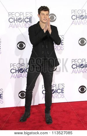LOS ANGELES - JAN 6:  Shawn Mendes at the Peoples Choice Awards 2016 - Arrivals at the Microsoft Theatre L.A. Live on January 6, 2016 in Los Angeles, CA