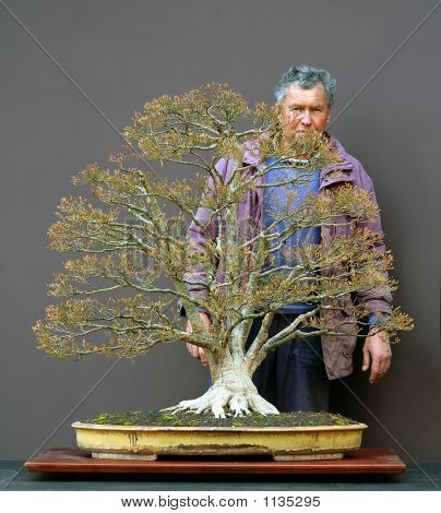 Bonsai Master With His Flagship