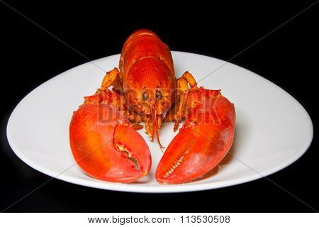 Red Lobster On A White Plate