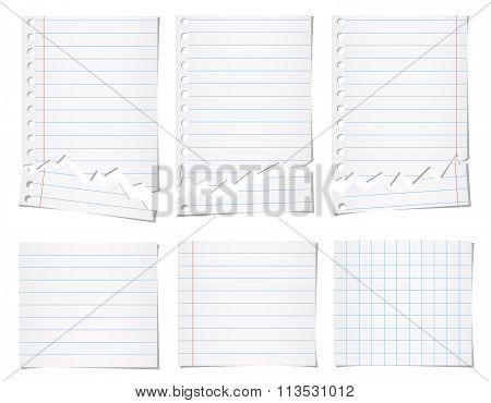 Set of white torn notebook paper with blue lines