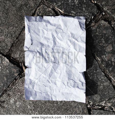 White blank postcard on asphalt texture