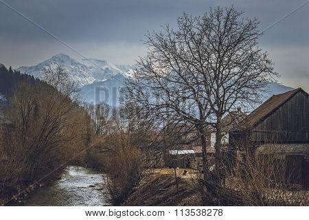 Springtime Rural Scenery