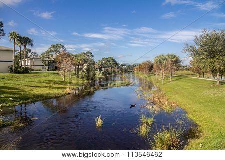 Sainte Lucie Florida Pond