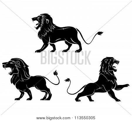 Tattoo Symbol Of Lion Head