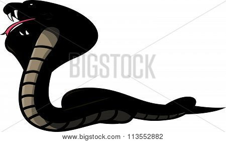 Cobra Illustration design