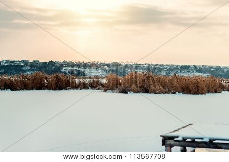 winter sunset over the reeds in the snow