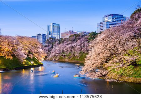 Tokyo, Japan at Chidorigafuchi Imperial Palace moat during the spring season.