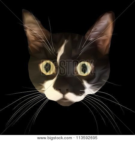 Staring cat head with big eyes and triangular style