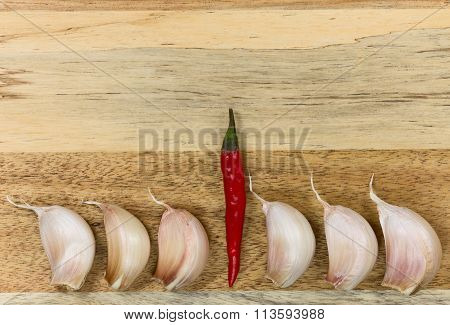Red chili pepper and garlic on the black background